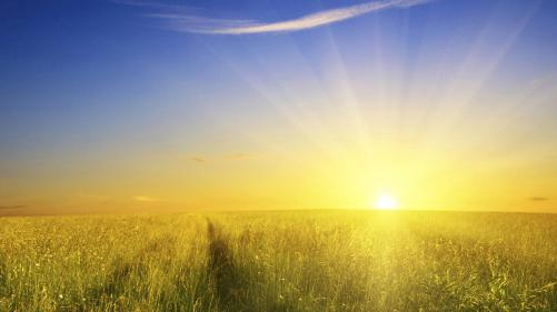 sunshine-background-26240-26930-hd-wallpapers